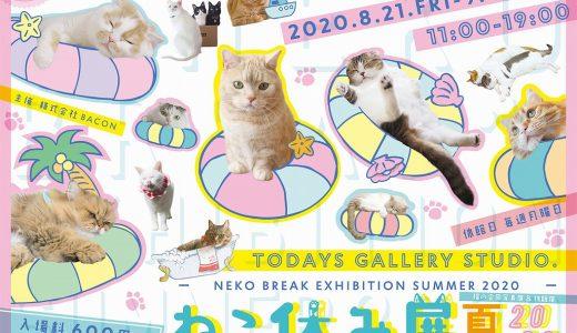 『ねこ休み展 夏2020』8/21(金)から浅草橋TODAYS GALLERY STUDIO.で開催