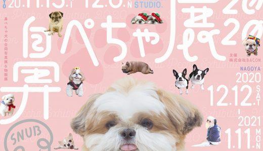 ブヒかわ!『鼻ぺちゃ展』11/13(金)から浅草橋TODAYS GALLERY STUDIO.で開催